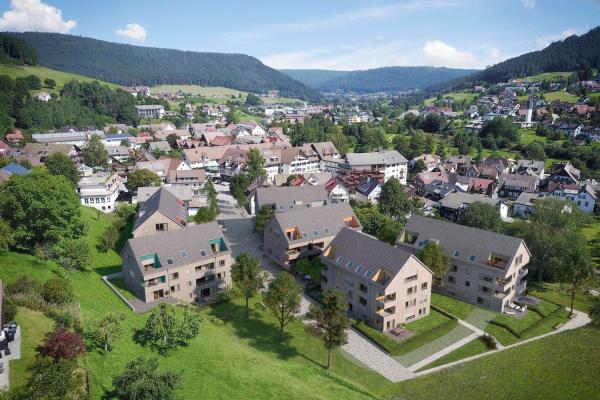 Panoramabild des Rosenparks