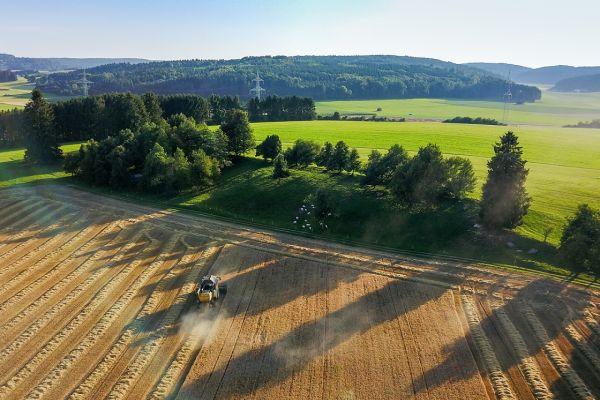 Landwirtschaft und Forst